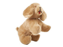 Old dog toy Royalty Free Stock Photography