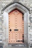 Old door Stock Images