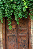 Old door. Form Chios - Greece Royalty Free Stock Image