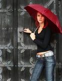 Old door Stock Photography