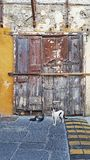 An Old Door in Rhodes Streets. An Old Door in Ancient Rhodes Streets with cats royalty free stock image