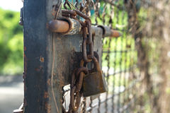 Old door bolt and chain with lock Royalty Free Stock Images