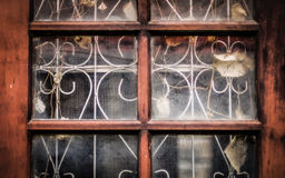 Old door. Glass brick wall Royalty Free Stock Images