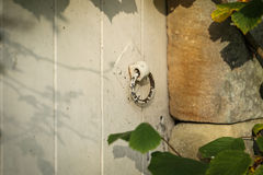 Old door with a handle Stock Photography
