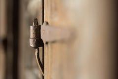 Old door hinge and door. Stock Photography