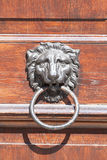 Old door knocker with lion head, close up. Stock Image