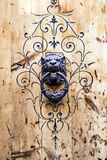 Old door knocker shaped like a lion Stock Photos