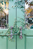 Old door locked with vine cover the door Stock Photo