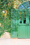 Old door locked with vine cover the door Stock Photography