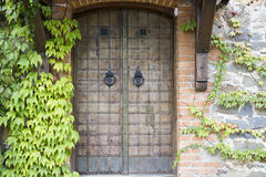 Old door in a stone wall Royalty Free Stock Images