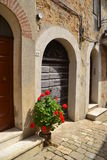 Old door in tuscany Royalty Free Stock Photo