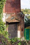Old door with vine arbour Royalty Free Stock Image