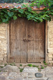 Old door and vine on stone wall Stock Photos