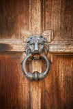 Old doorknob in shape of lion head with ring. On vintage wooden door Royalty Free Stock Photo
