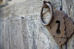 Old doorknocker and door Royalty Free Stock Image