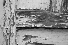Old doors. Black and white stock images