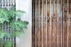 Old doors are closed Royalty Free Stock Images