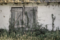 Old doors Stock Photography