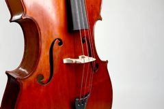 Old double bass c bout and belly on white background Royalty Free Stock Photo