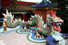 Old Dragon on oriental temple Stock Image