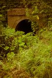 Old Drain Pipe Retro. Large old concrete drain pipe, culvert in the grass, filtered background Stock Photo