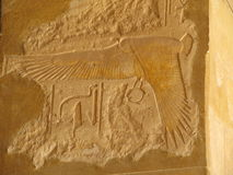 Old drawings. Egypt's ancient drawings in the Temple of Queen Hatshepsut royalty free stock photos