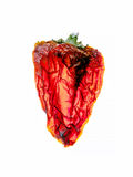 Old dried red pepper in art style. Vintage. Dried old red pepper in art style. Closeup. Vintage Royalty Free Stock Images