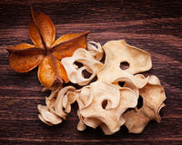 Old dried up flower and an unrecognizable plant Stock Photography