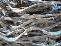 Old drift wood beach. Old weathered driftwood with blue rope on a pile Royalty Free Stock Photography
