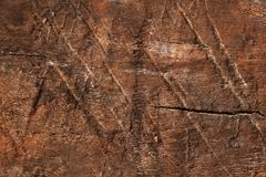 Old dry dark wooden surface, textured and detailed. Old rough and weathered wooden surface close up, dirty, textured and detailed Royalty Free Stock Photography