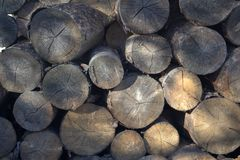 Old dry logs. View from a different angle. Background image. royalty free stock photography