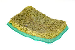 Old dry spong Stock Photography
