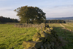 Old  Dry Wall Stone Fences Royalty Free Stock Photography