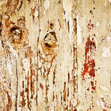 Old dry wood background Stock Photos