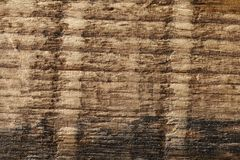 Old dry wood weathered and grunge. Old rough and weathered wooden surface close up, dirty, textured and detailed Royalty Free Stock Photography