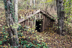 Old dugout. In the deciduous forest stock photos