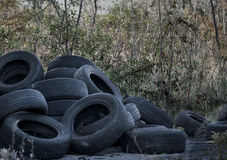 Old dumped tires. Old used tires dumped in the meadow Stock Photos