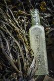 Old Edinburgh bottle found on beach on the Moray Firth. Stock Photos