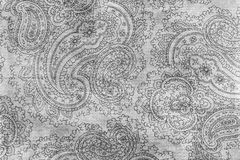 Old elaborate paisley pattern on paper. A detail from a print of an ornate monochrome paisley pattern Royalty Free Stock Photos