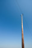 Old electricity pole power line Royalty Free Stock Photos