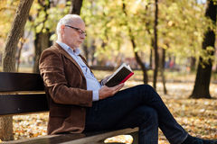 Old elegant man reading a book outside Royalty Free Stock Photography