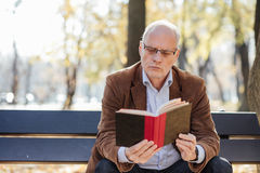 Old elegant man reading a book outside Stock Photography