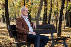 Old elegant man sitting on bench outside Stock Photos