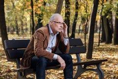 Old elegant man sitting on bench outside Royalty Free Stock Photo