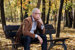 Old elegant man sitting on bench outside Stock Image