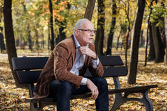 Old elegant man sitting on bench outside Stock Images