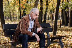 Old elegant man sitting on bench outside Royalty Free Stock Photography