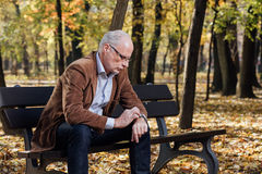 Old elegant man sitting on bench outside Royalty Free Stock Images