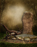 Old elven rock. In a forest Royalty Free Stock Photo