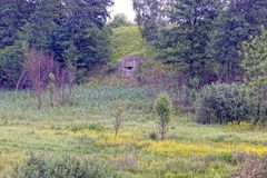 The old embrasure of the military pillbox on a hill with trees and grass. Gray concrete reinforcement with embrasure on the hillside in green vegetation and royalty free stock image